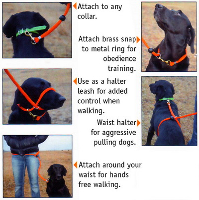 dokken-pro6-5-in-1-leash-inset